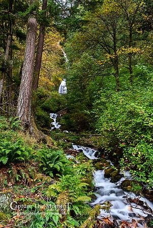 Wahkeena Creek and Falls