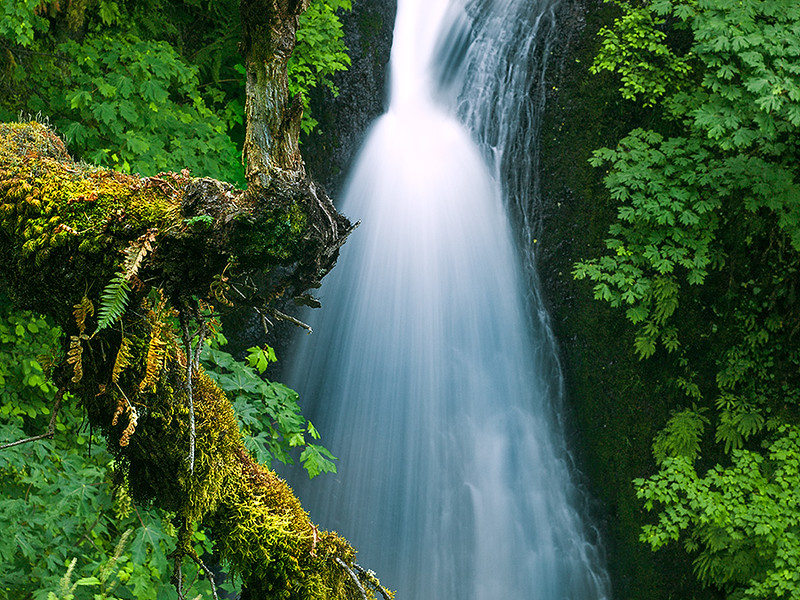 Horsetail Falls, Columbia River Gorge