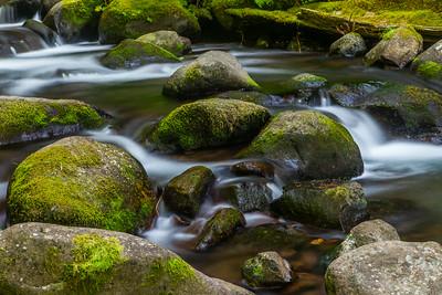 Water, Rocks & Moss