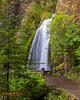 Wahkeena Falls.  Columbia River Gorge, Orgeon
