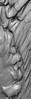 Redwoods - Bandon OR-052913-2156-Edit