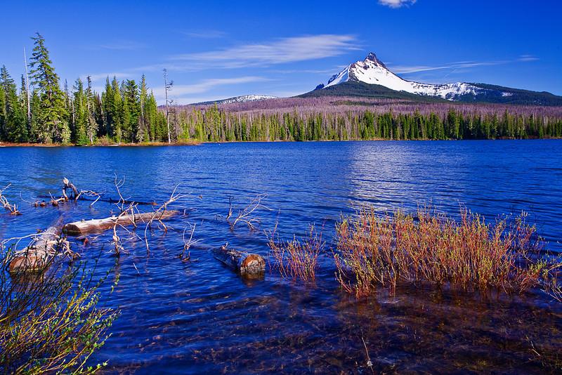 Oregon, Mount Washington, Landscape, 俄勒冈,华盛顿山, 风景
