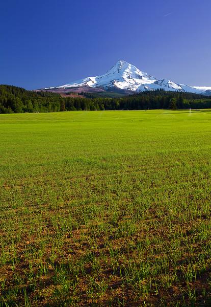 Oregon, Hood River Valley,Mount Hood, Landscape, 俄勒冈, 胡德河流域, 风景