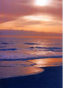 Gold Beach 233 (33128644)