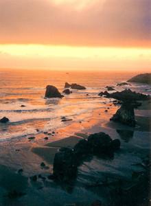 Gold Beach 245 (33128693)