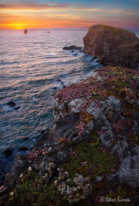 Ancient Seabed Cliffs<br /> <br /> Brookings, Oregon
