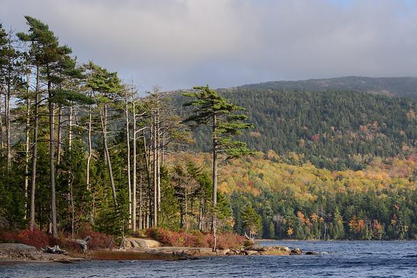 Eagle Lake Afternoon Foliage