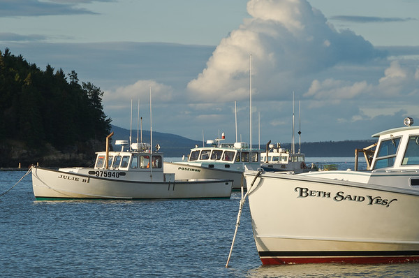 Bar Harbor Working Boats