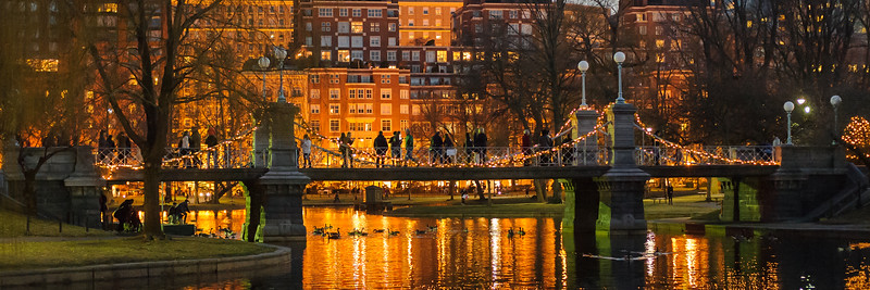 2014_Boston Public Garden_13033