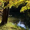 Herbststimmung bei Kottingbrun