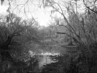Swanee River, Florida