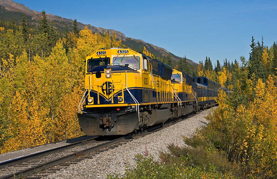 Anchorage to Denali Train