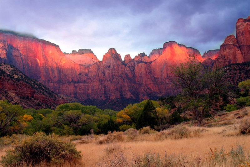 Sunrise near the Visitor's Center at Zion National Park