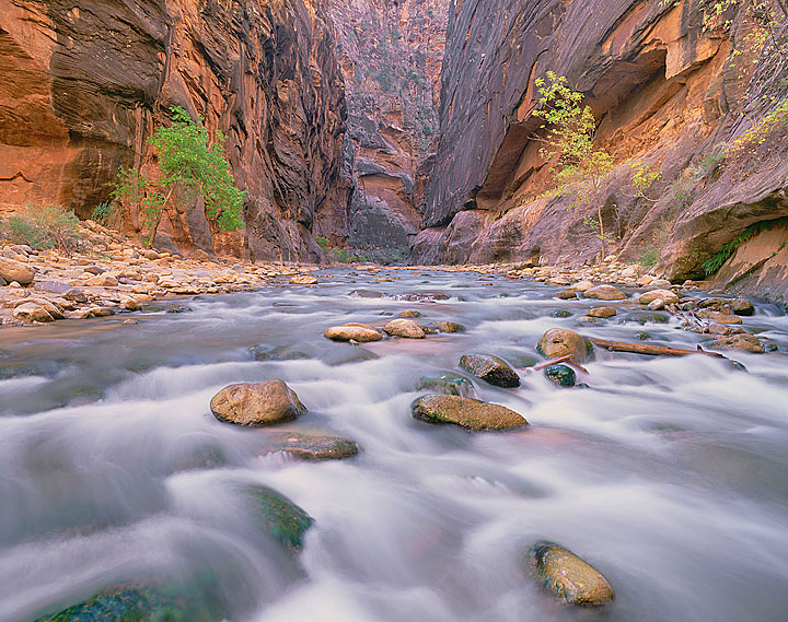 Virgin River, Zion NP