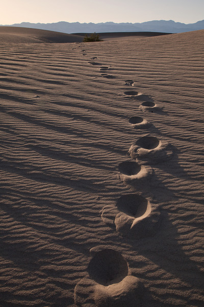 Footprints...Death Valley National Park, CA