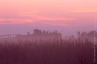 Pink Fog at Dawn