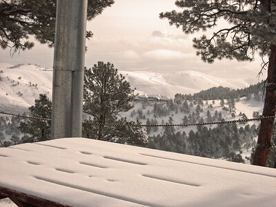 Snow 2009 03 (49)