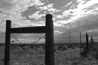 CO 2011 08 Road Trip 9 bw