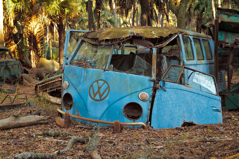 """Bygone Days II""<br /> Vehicle Graveyard<br /> Ossabaw Island, GA"