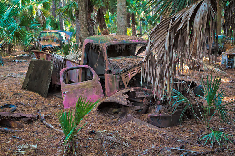 """Bygone Days I""<br /> Vehicle Graveyard<br /> Ossabaw Island, GA"