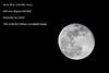 Another moonshot  full frame 40D   _MG_3333