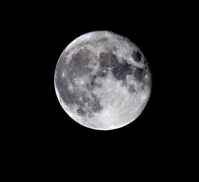Full moon plain 7455