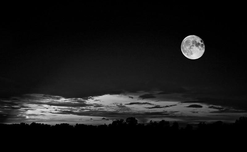 Badd Moon rising  lighting filter B&W  8280