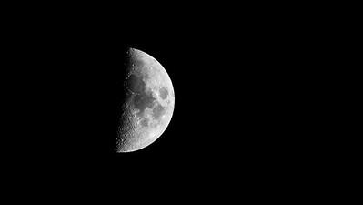 half moon at 1 500th f 63 ISO 2000  600mm Tamron  1DX Mk II  monochrome -9422