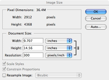 Let us change the resolution to 300 pixels per inch, a more typical choice for printing an 8x10 print on a good quality desktop ink jet printer. <br /> <br /> Resolution is set by the image editor, YOU, in Photoshop.  Resolution describes how many pixels there will be PER INCH.  <br /> <br /> Replace 72 ppi by 300, and the new dimensions become 9.707 by 14.56.  The image is smaller in size in inches, but has a higher resolution in pixels per inch, but still has the same exact pixels it began with.<br /> <br /> Be sure to UNCHECK the Resample Image box ( which is checked in the first version seen above )  so you will not create or remove any pixels. You will now have exactly the pixels you started with.  NO more, NO less.  But the image size IN INCHES changes automatically.<br />  <br /> Historically, 72 pixels per inch is standard resolution for web based images, while images destined for printing need resolutions in the order of 180- 360 pixels per inch.  <br /> <br /> Counter-intuitively, larger prints can be printed at much lower pixels per inch ( at only ~150 pixels per inch) because they are usually viewed from a greater distance - such as a billboard along a highway viewed at 100 feet versus an 8 by 10 inch print viewed at 8 inches.<br /> <br /> The original image must have enough TOTAL pixels to achieve a satisfactory pixels per inch,  to allow an image to be displayed in a print or on a monitor with appropriate sharpness and detail.  <br /> Too few pixels per inch will result in a loss of sharpness and detail.