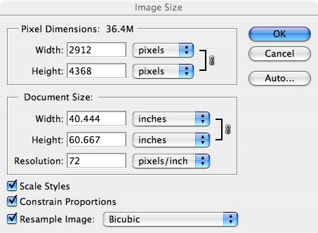 The Image>Image Size command in PhotoShop brings up a dialogue box, as seen to the right, that  lists this as a 36.4 Megabyte image, and shows that there are 2912 pixels horizontally and 4368 vertically for a shot in a portrait orientation. The box is obtained by pressing Image>Image Size after having opened an image in Photshop.<br /> <br /> <br /> The Image>Image Size command opens the dialogue box to the right, which shows an image size of 40.444 by 60.667 inches, at 72 pixels per inch.  But a digital image has no actual size associated with it,  just a specific number of pixels, and a CALCULATED dimension based on the resolution desired, which in this box is 72 pixels per inch.