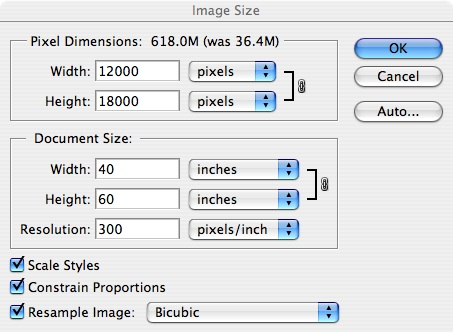 "But what if you need 300 pixels per inch, and an image 60 inches in its long dimension?  <br /> <br />      There are not enough original pixels in my 5D image at 300 pixels per inch for 60 inches, but if we check the Resample Image box, Photoshop will create the needed pixels for us by interpolation of the original pixels.  <br /> <br /> There are several different algorithms Photoshop uses to interpolate the data and create new pixels.  For uprezzing (making larger), Bicubic or Bicubic Smoother are usually best.  For downrezzing or making smaller, Bicubic Sharper is better.  For extreme changes of scale ( greater than 10 to 1) other software such as Genuine Fractals or Blow Up are used to achieve satisfactory enlargements without loss of contrast or detail.<br /> <br /> When we uprezz this image, the size becomes 40 by 60 inches at 300 ppi, or better stated as 12,000 pixels by 18,000 pixels - the 12.7 Megabyte image has been ""uprezzed""  to 618 Megabytes in size."