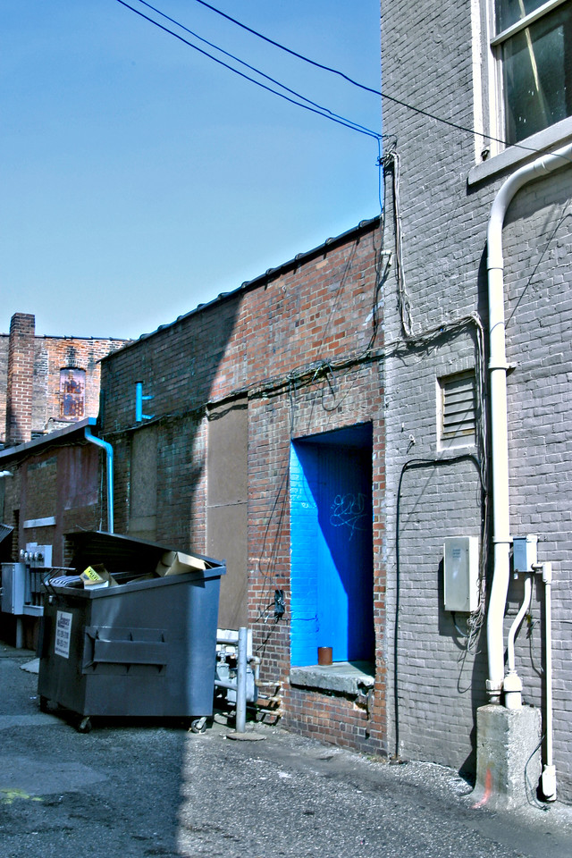 Blue alleyway door 8094