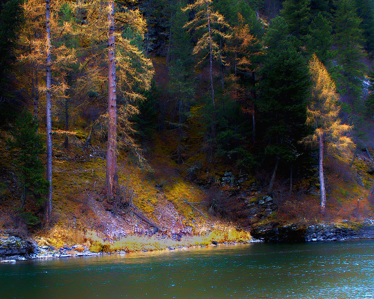 Fall colors on the Blackfoot River