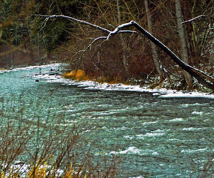 Early Dec. on Rock Creek