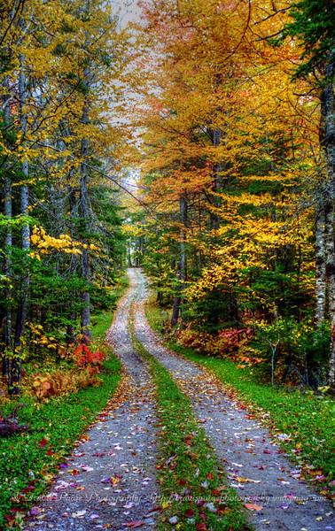 Green Woodlands 2000-Lyme, NH