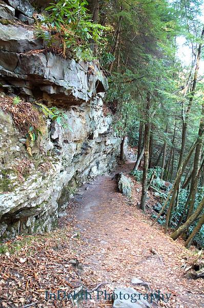 Swallow Falls Path