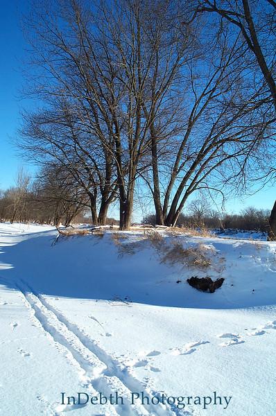 Picture 088 Cedar Rapids winter