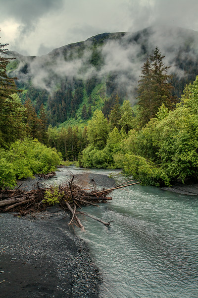 Fishy Rivers