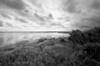 Pea Island Wildlife Refuge