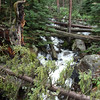 More on the west side of Calypso Cascades.