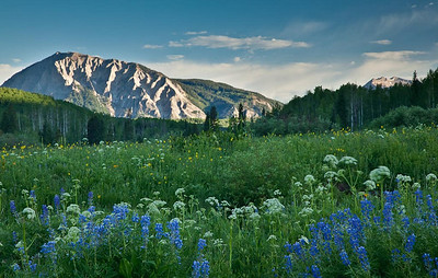 Mt. Marcellina Kebler Pass Road