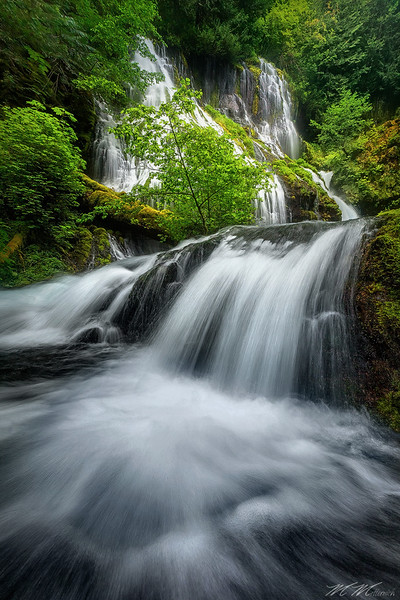 """Panther Cascade""  - Pacific Northwest"