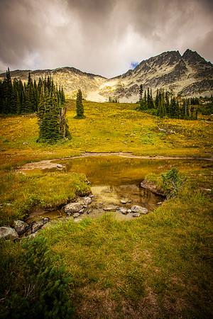 Whistler Mountain, British Columbia