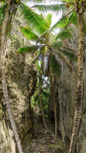Togo Chasm, Niue
