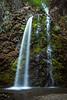 oregon-fall creek falls-5534