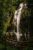 oregon-proxy falls-5411