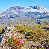 Mount St. Helens - Mt. St. Helens National Volcanic Monument, WA
