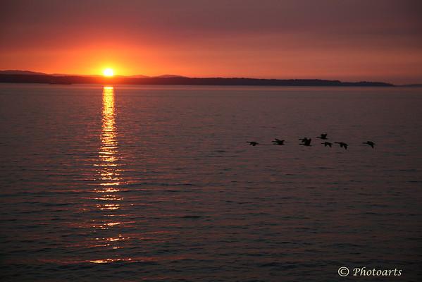 Sunset Flyby