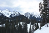 View from Paradise - Mount Rainier National Park