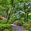 Garden Path - Portland Japanese Garden, OR